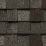 Mountain Timber roof color