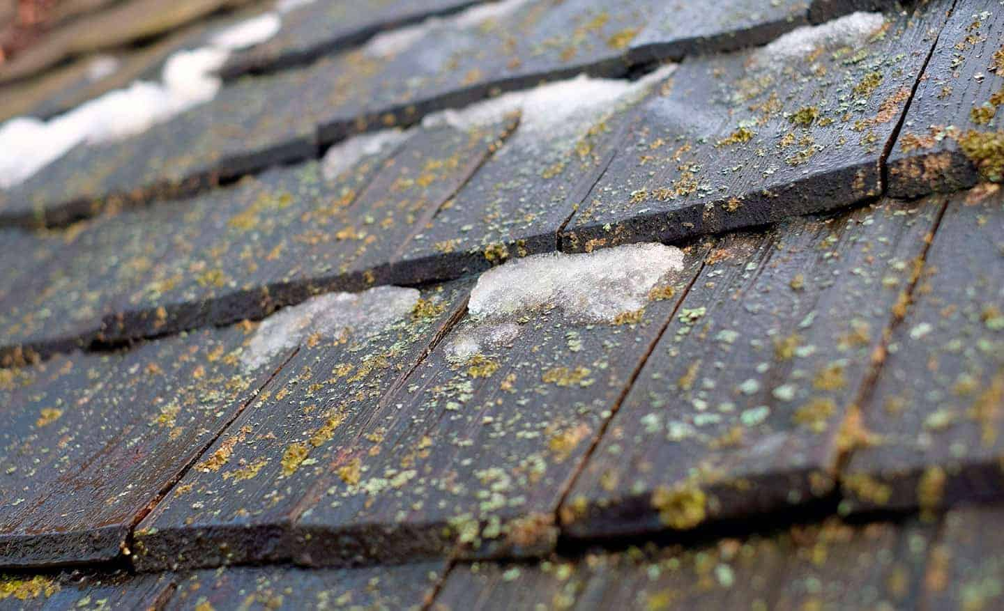 how much hail damage to replace roof